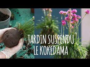 Kokedama comment faire ? Kokedama instructions - Kokedama DIY - Chroniqueur jardin Franck PROST - YouTube