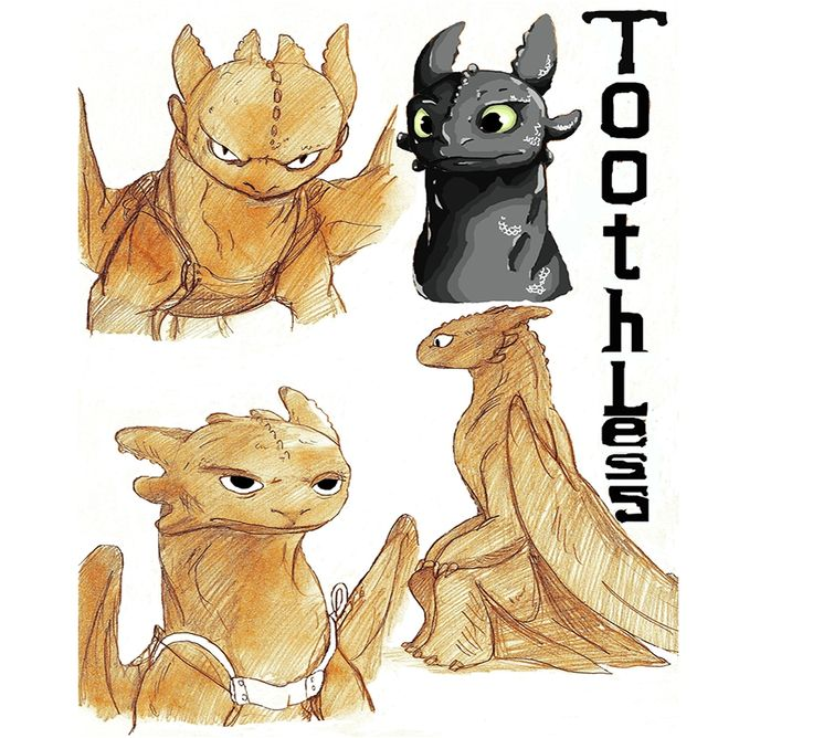 30 best school of dragons images on pinterest train your dragon how to train ur dragon how to train your dragon photo fanpop ccuart Choice Image