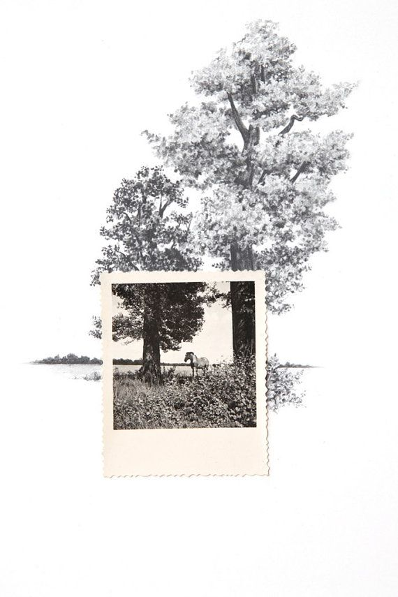 Drawing with a vintage photo. must do this.