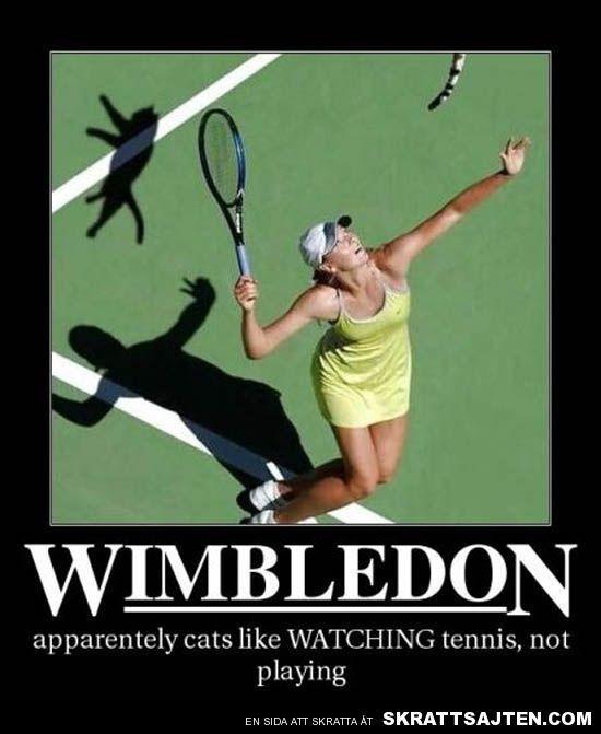 Anti-motiverande sportbilder (36 bilder)