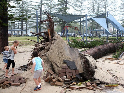 Children look at a fallen tree in Burleigh Heads, the direct result of tropical cyclone 'Oswald' on 28 Januarry, 2013.