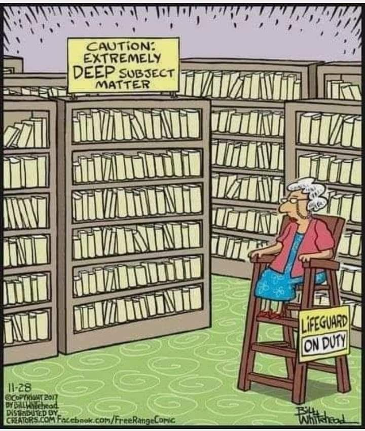 Pin By Lisa Pickett On Funny Library Humor Library Memes Librarian Humor