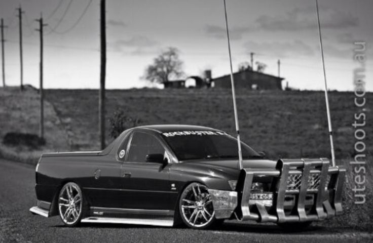 Awesome Bns ute