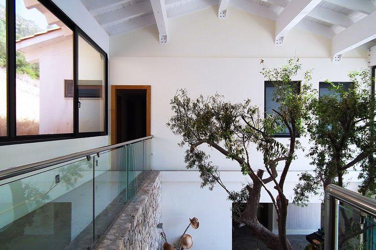 Droomvilla in Griekenland  met grote vide. De dakspanten zijn in het zicht gebleven en midden in de vide is een oude olijfboom blijven staan. Ontwerp van BNLA architecten
