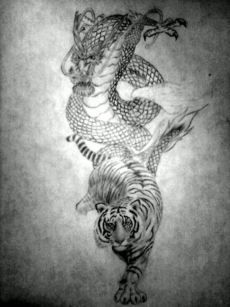 a tattoo idea i got from all the dragon vs tiger designs i have been seeing as of late pic was taken and edited on my phone my the one i scanned with my scanner was too big to upload