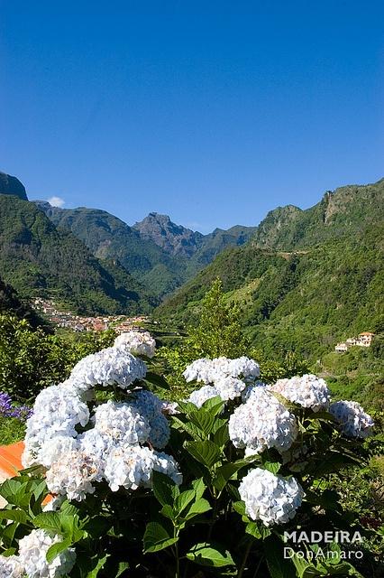 Fajã do Penedo, Madeira Island, Portugal
