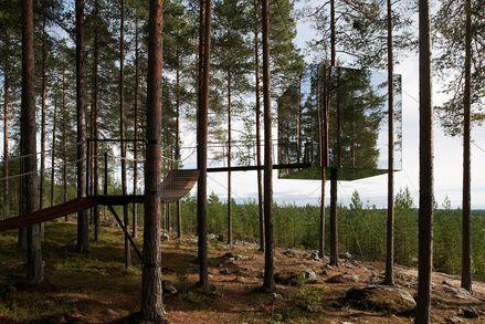 Bolle Tham studeerde af in Architectuur aan de 'Royal Institute of Technology' in Stockholm in 1997. Na een postacademische studie aan de 'Royal University College of Fine Arts' startte hij samen met Martin Videgård in 1999 Tham & Videgård Arkitekter. Ze diverse prestigieuze prijzen en onderscheidingen gewonnen waaronder de 'Kasper Salin Prize' in 2008 voor beste nieuwe architectuur in Zweden Het Tree Hotel is net een futuristisch vogelnest. Het ontwerp gaat helemaal op in de omgeving…