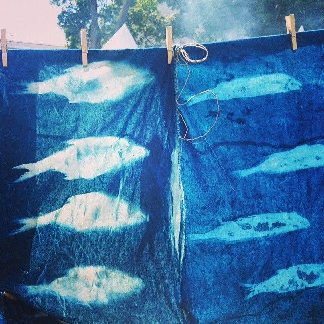 """Fish Natural Dyeing) Special for More Amore, Seasons of Life's Summer Festival #rubus_idaeus #moreamore #seasonsproject #dyeing"""""""