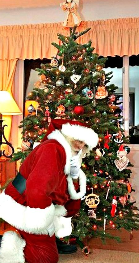Capture Santa In Your Home ~ Website Where You Take A Picture Of Your Tree,