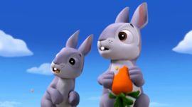The Bunnies - PAW Patrol Wiki - Wikia
