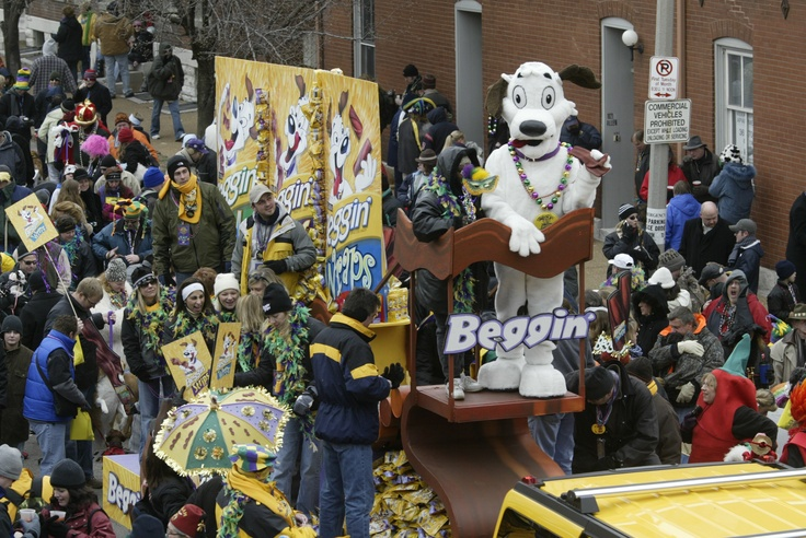 St. Louis Mardi Gras Annual Beggin' Pet Parade. One of the