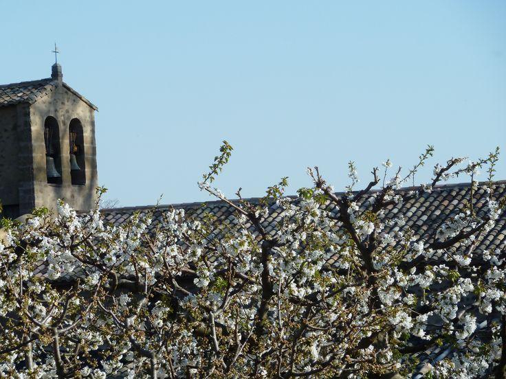 Silvacane Abbey (La Roque d'Anthéron)