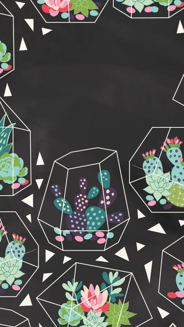 Cacti // wallpaper, backgrounds