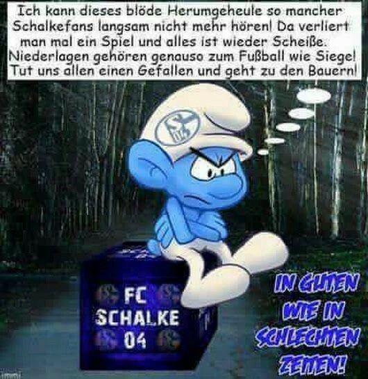 Lustige Schalke Bilder