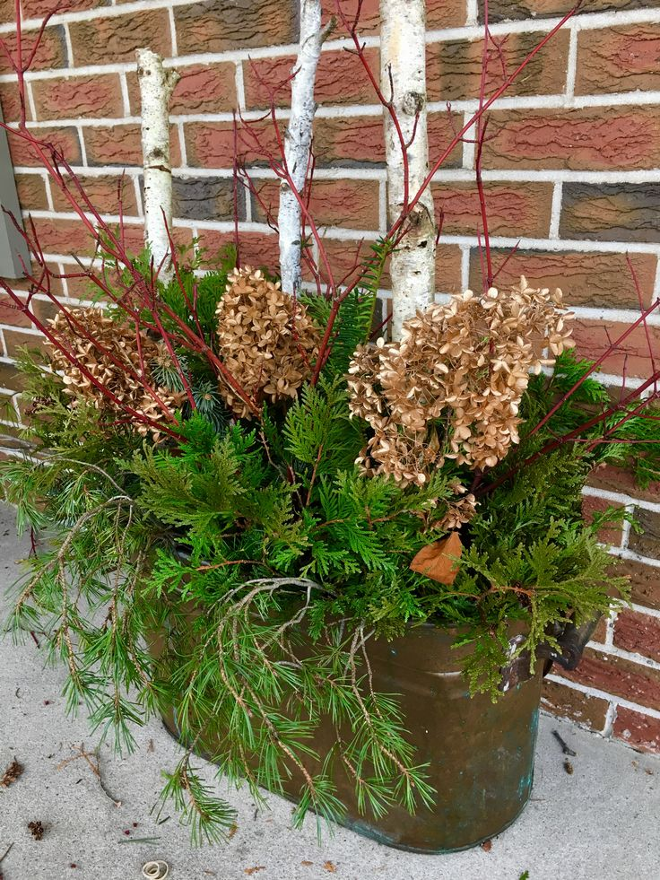 Antique Copper pot Christmas display for front porch, gold spray painted dried hydrangeas