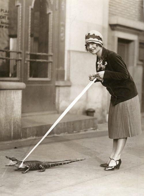Woman walking alligator.