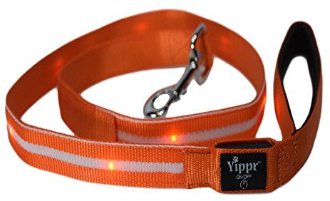 Lighted LED Dog Collars – Rechargeable Light Up Dog Collar. To get more information visit https://www.yippr.com/led-dog-collars/