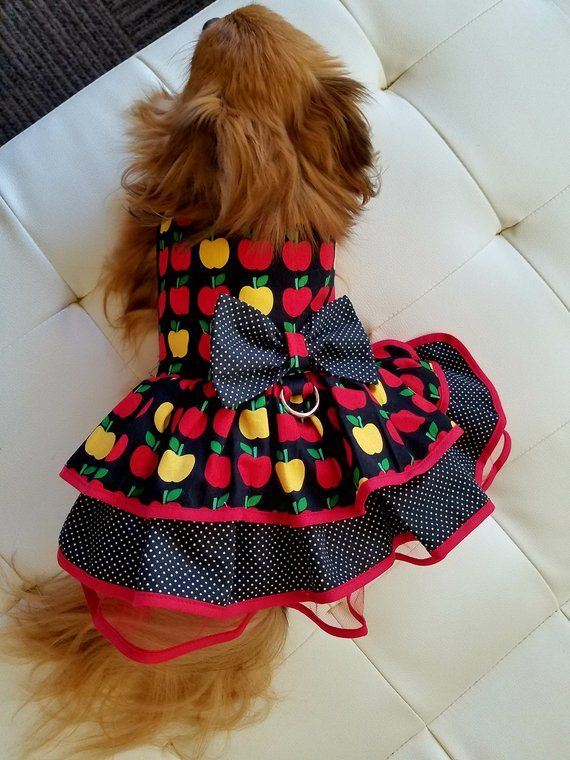 Apple Dog Dress Fancy Dog Puppy Dress Pet Apparel Cute Dog