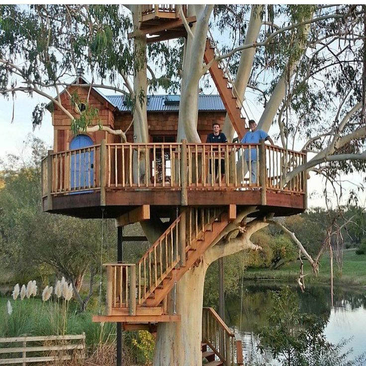 Welcome to all the Australians who heard about @treehouseclub_ through @stacygougoulis at @triple_j . This is an example of a treehouse built by @treehousenationcom in a Blue Gum. A plentiful tree in Australia.
