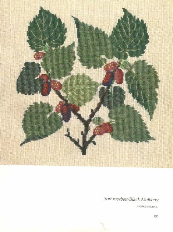 Gallery.ru / Фото #103 - Книга с яблоневой веткой на обложке - Mosca