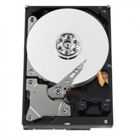 NEW Product Alert:  Western Digital AV-GP 500GB 500GB Serial ATA II internal hard drive  https://pcsouth.com/serial-ata-hard-drives/377754-western-digital-av-gp-500gb-500gb-serial-ata-ii-internal-hard-drive-serial-ata-hd-western-digital.html