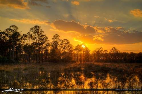Sunset at the Marsh in Palm Beach Gardens Florida