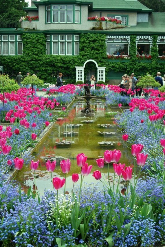 44 best images about not so secret gardens on pinterest - Best time to visit butchart gardens ...