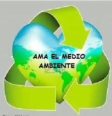 Frases para el cuidado del medio ambiente - Clima, Medio Ambiente y ...