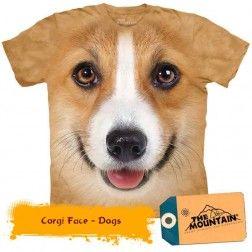 Corgi Face - Dogs