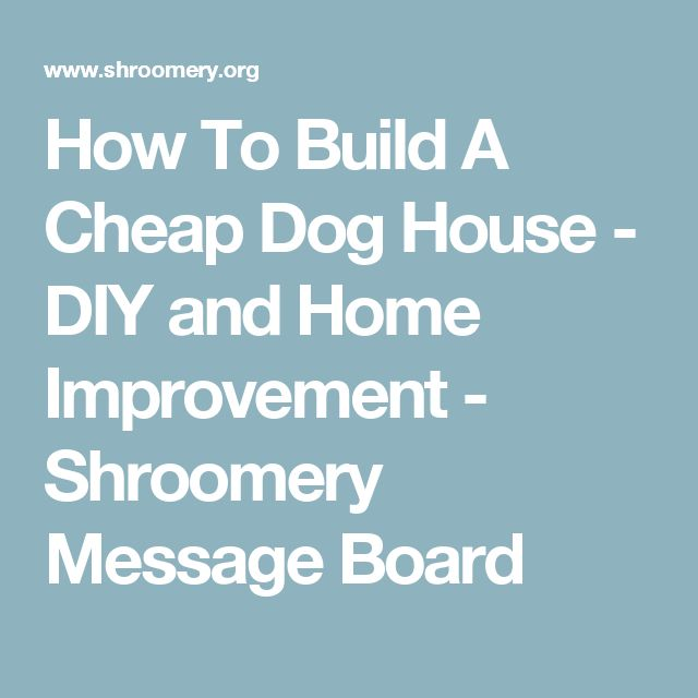 25 best ideas about cheap dog houses on pinterest cheap for How to build a dog house cheap