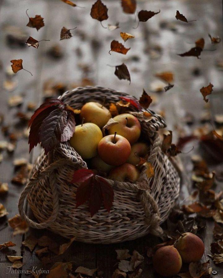 Осеннего настроения картинки, летием