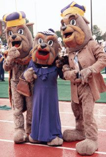 19 best images about college mascots colonial athletic for James madison pets