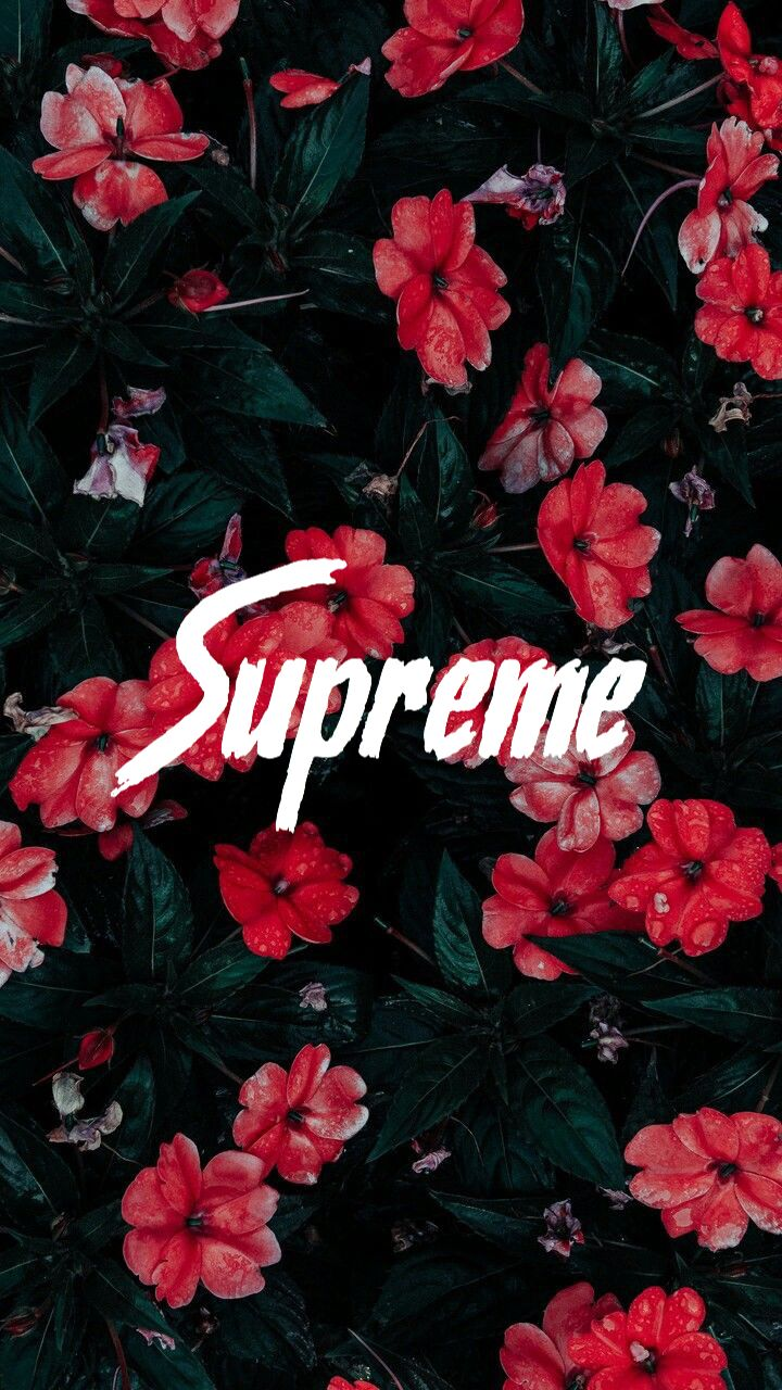 Supreme Flower Flowers Wallpaper Lockscreen Background Tumblr Phone Wallpaper Quotes Cute Wallpapers Love Wallpaper