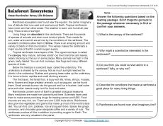 Rainforest Ecosystems   4th Grade Reading Comprehension Worksheet