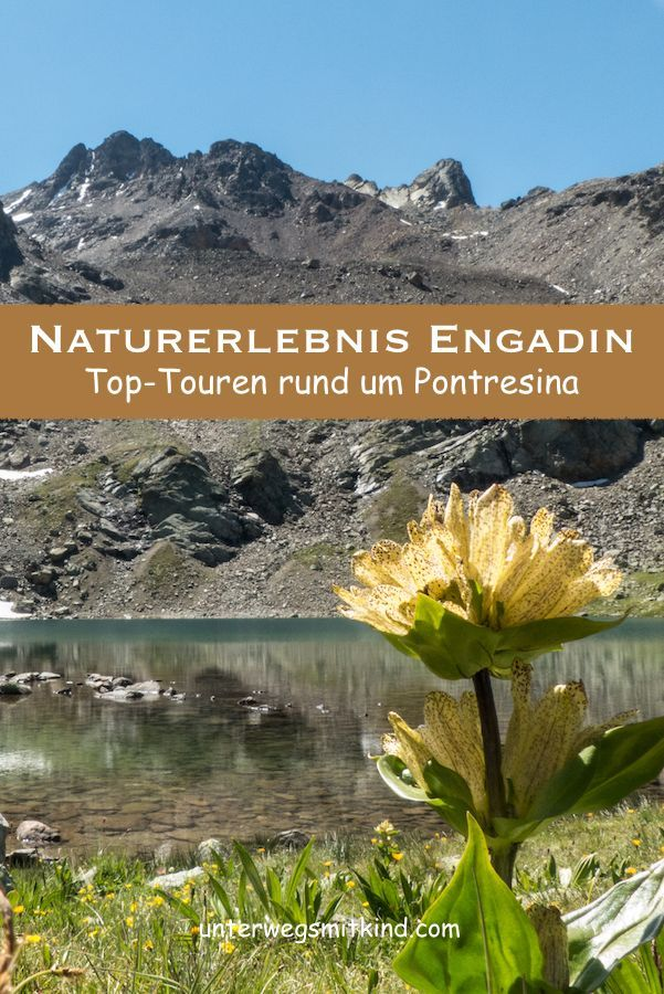 Bergsommer In Pontresina Highlights Und Top Touren Im Engadin Mit