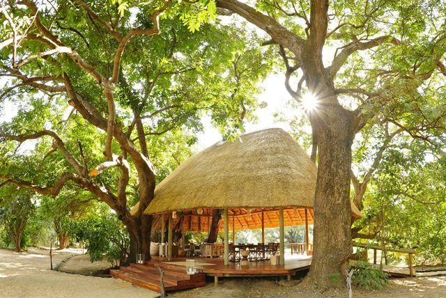 dining room and bar at Bilimungwe