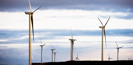 Nice: Latin America's Largest Wind Project to Power Mexico Coca-Cola, Heineken, OXXO