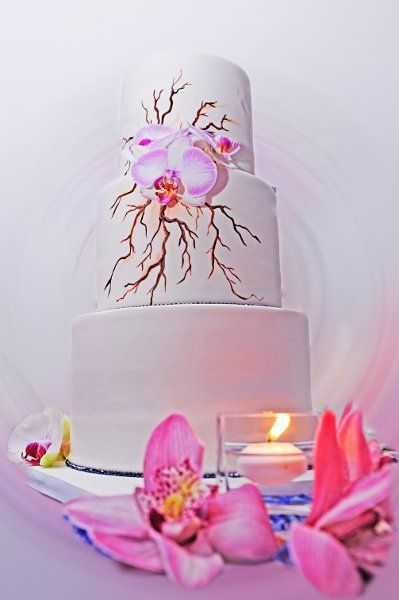 Modern Pink Round Wedding Cakes Photos & Pictures - WeddingWire.com
