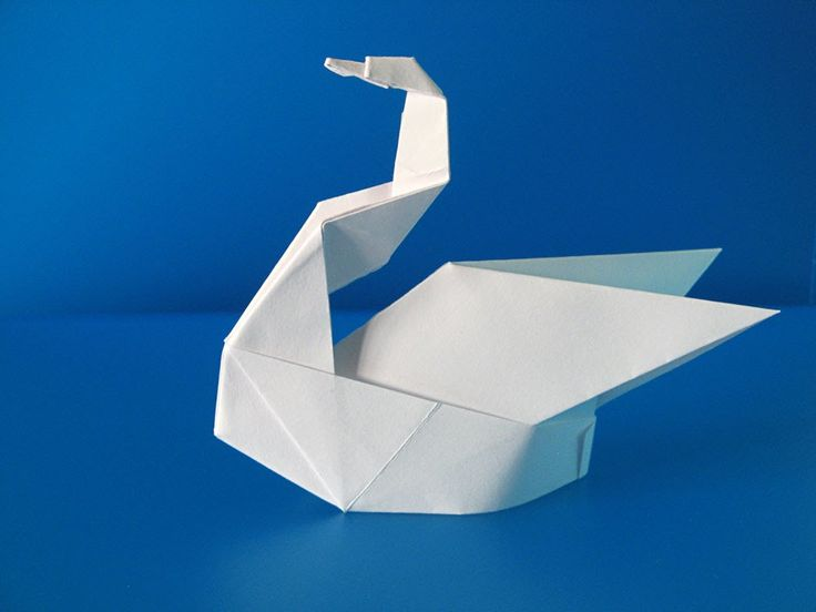 Cigno Esse - Swan Esse by Francesco Guarnieri