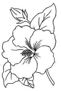 Free Embroidery Pattern : Hibiscus Flower