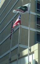 En el Courtyard Marriot en Miramar a la 2:29 p.m. las banderas se encuentran colocadas correctamente. Las tres están en buenas condiciones, son del mismo tamaños, las astas están correctas y están a la misma altura.