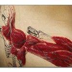 Systems explora la anatomía del cuerpo humano, dibujando el sistema óseo y tejiendo el cardiovascular para crear increíbles obras de arte.