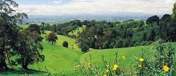 ✿ڿڰۣ(̆̃̃•Aussiegirl Country that surrounds my country town Drouin Victoria, Australia   http://pinterest.com/aussiegirllori/
