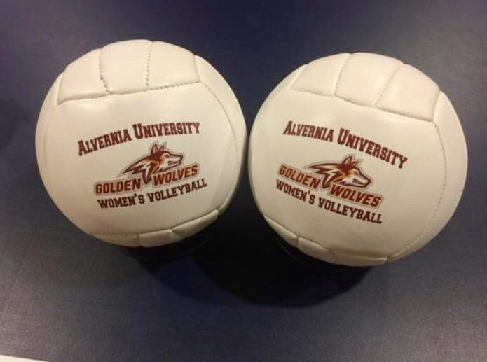 Volleyball Gift Volleyball Gifts Coaching Volleyball Sports