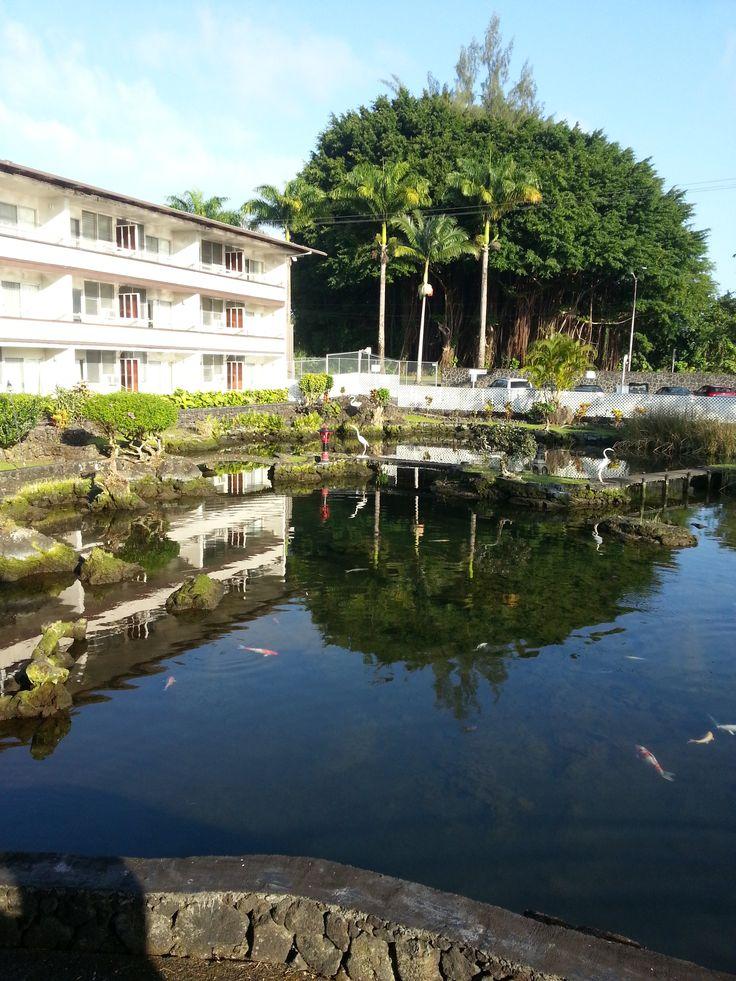 Hawaii  Szálloda első 2 nap