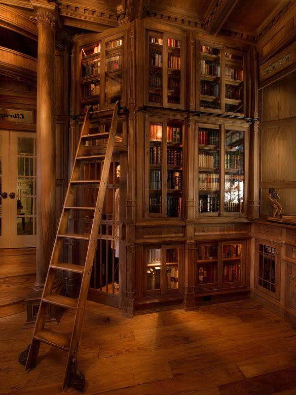 My dream home library. The Beauty and the Beast ladder with quaint wooden bookcases.