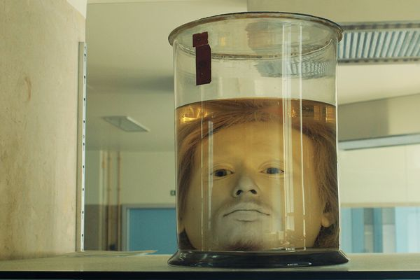 See an Alarmingly Well-Preserved Human Head in a Jar at This Portuguese University http://www.atlasobscura.com/articles/diogo-alves-head-lisbon?utm_campaign=crowdfire&utm_content=crowdfire&utm_medium=social&utm_source=pinterest