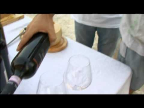 Wine Portfolio: Trying Sagrantino