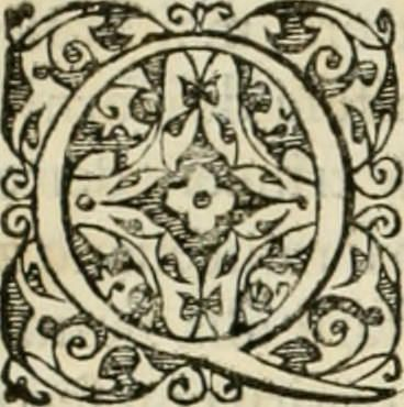 """Image from page 187 of """"Corona imperiale dell' architettura militare"""" (1618) #initial_Q #initial #Q"""