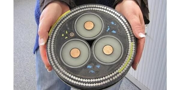 Cross-section of an undersea cable by Ann Lingard